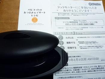 P1010541.jpg